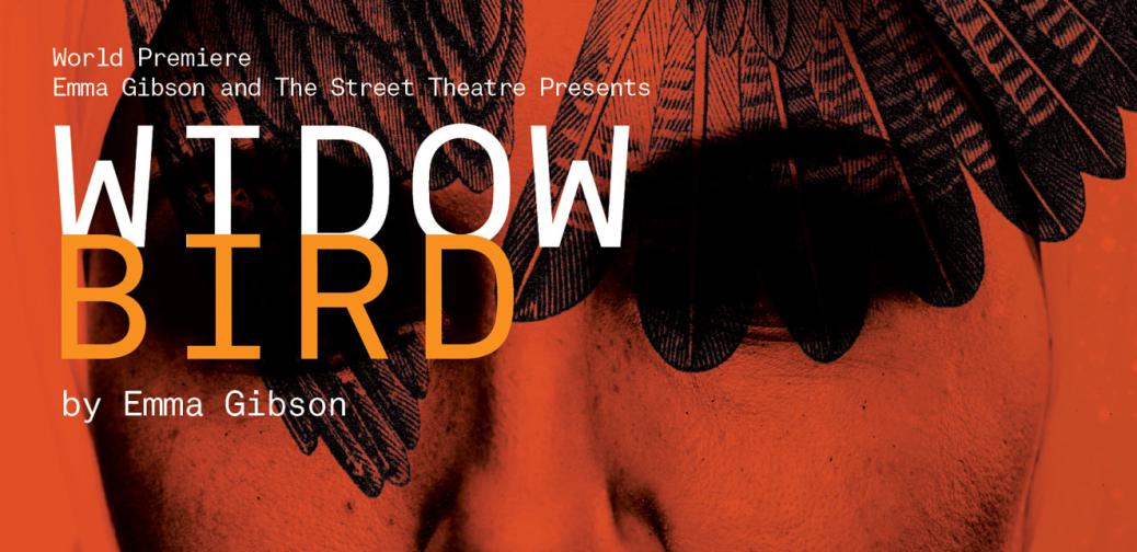 Widowbird poster